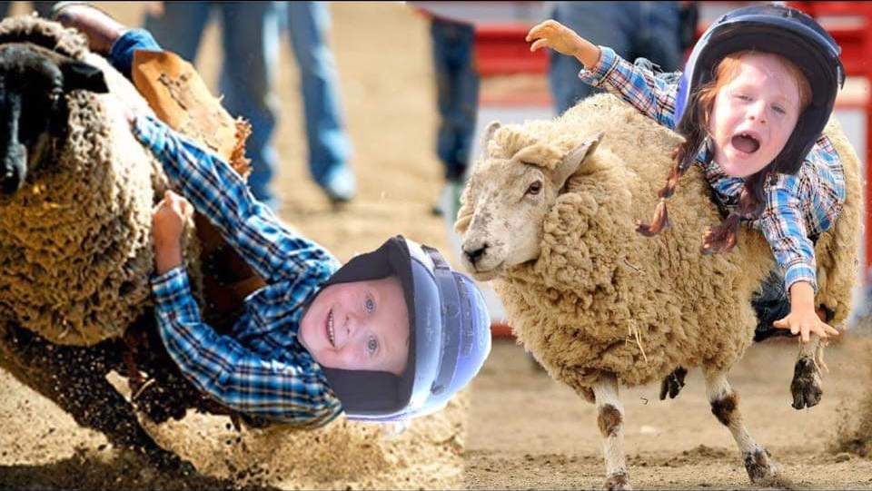 Mutton Busting.